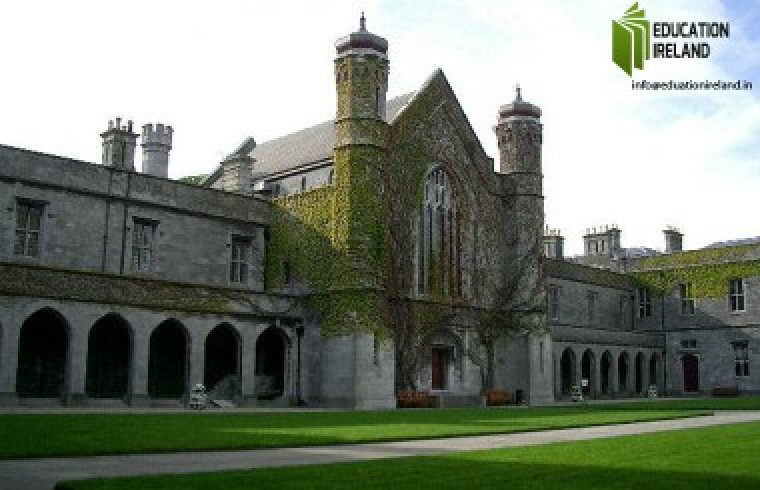 What Should You Do When Applying for PhD in Ireland?